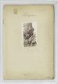 Carabinier. 1897 (NYPL b14896507-88961).tiff