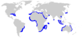 Spinner shark geographic range