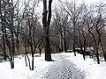 Central Park near 81th Street - panoramio.jpg