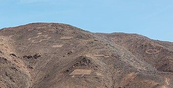 Cerros Pintados, Pampa del Tamarugal, Chile, 2016-02-11, DD 95.jpg