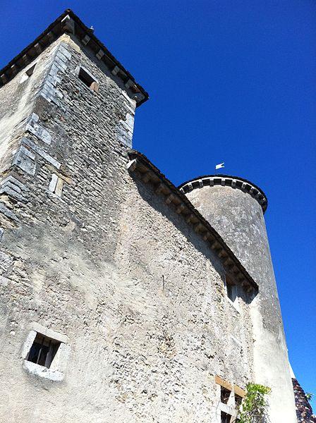 Château de Sancé - vue coté sud - 2011 (Avant travaux Commune)