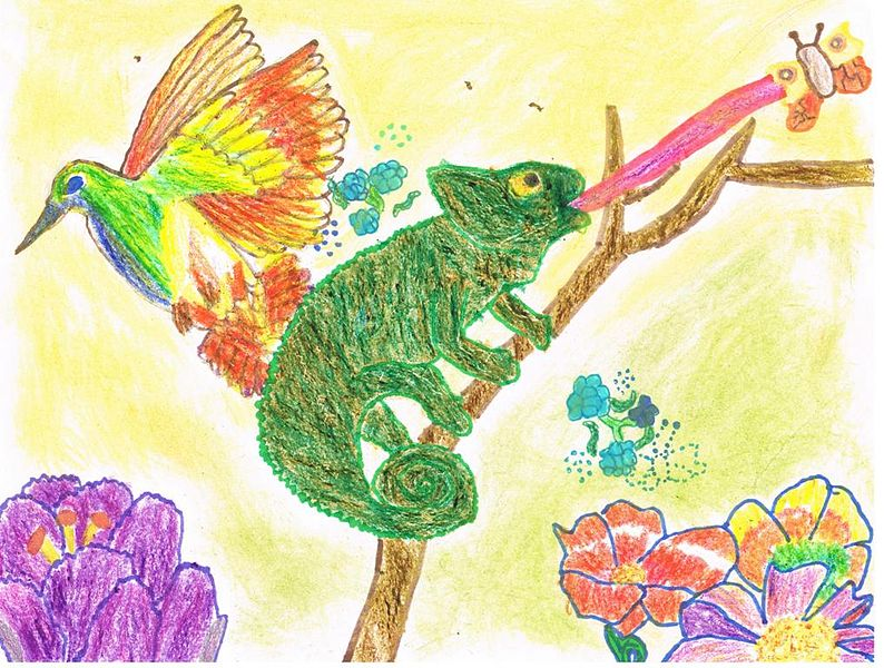794px-Chameleon_and_hummingbird.jpg