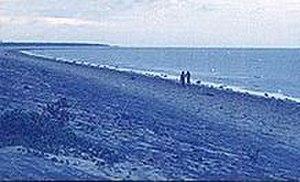 Balasore district - Chandipur Beach