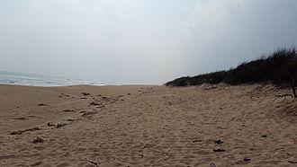 Chandrabhaga beach - Chandrabhaga Beach