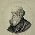Charles Robert Darwin. Pen and ink drawing. Wellcome V0001465.jpg