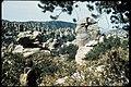 Chiricahua National Monument, Arizona (ba6a0fbc-3faa-4fcc-ac8c-78dcd81799c2).jpg