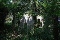 Church of St Andrew's, Boreham, Essex - grave stones at west of churchyard 2.jpg