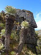 Ciudad de Piedra - Páramo de Ocetá.jpg