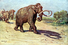 Painting of a family of mammoths walking