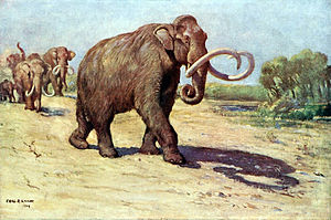 Waco Mammoth National Monument - Depiction of a Columbian mammoth