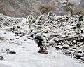 Combat Camera in Afghanistan.jpg
