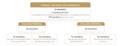 Composition du CNB (schéma).png