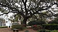 Congo Square- New Orleans.jpg