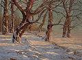 Constantin Westchiloff - Winter Forest Lit by the Sun.jpg