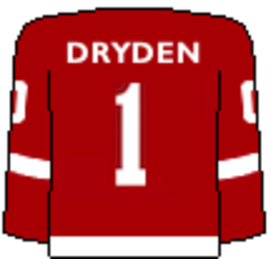 Cornell Big Red men's ice hockey - Image: Cornell Retired Sweater 1 Dryden
