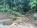 Costa Rica - Nate roadside.jpg