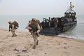 Cougar Voyage 15 amphibious assault 141013-M-ET630-014.jpg