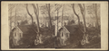 Country House in the suburbs of New York, from Robert N. Dennis collection of stereoscopic views.png