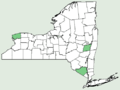 Cucumis sativus NY-dist-map.png