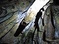 Cueva de Valporquero.019 - Vegacervera (Leon).jpg