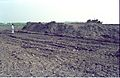 Cut And Fill Excavated Area - Science City Site - Calcutta 1994-01-29 421.JPG