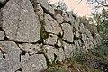 Cyclopic walls.jpg