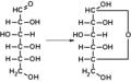 D-glucose D-glucopyranoside TOLLENS.png