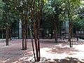 Damansara Perdana, 47820 Petaling Jaya, Selangor, Malaysia - panoramio (6).jpg