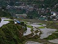 Damp day in Banaue (3294262633).jpg