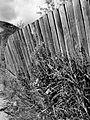 Dawson City fence (7842857018).jpg
