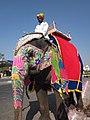 Decorated elephant. - panoramio.jpg