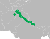 Dendrocopos himalayensis distribution map.png
