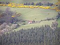 """Derelict """"Eyreland"""" - geograph.org.uk - 161944.jpg"""