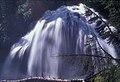 Deschutes National Forest Whychus Falls (36696217260).jpg