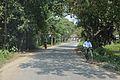 Deulti-Panitras Road - Howrah 2014-10-19 9745.JPG