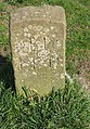 Dole stone, Hampton Meadow - geograph.org.uk - 1222674.jpg