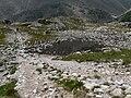 Dolina Starolesna, staw przy szlaku z Czerwonej Lawki.jpg