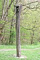 Dolní-Bukovina-zvonička-v-luhách2019.jpg