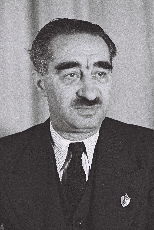 Dov Yosef