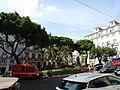 Downtown Lisbon (48783159796).jpg