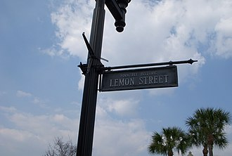 Downtown Palatka - Lemon Street Sign