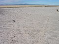 Dry lakebed on the Snake River Plain, Idaho.jpg