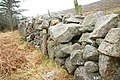 Drystone wall near Newcastle (1) - geograph.org.uk - 1215567.jpg