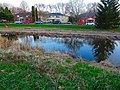 Duck in the Retention Pond - panoramio.jpg