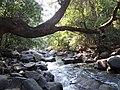Dudh Sagar Water Falls - panoramio (4).jpg