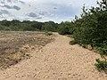 Dunes Charmes Sermoyer 9.jpg