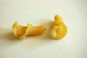 Campanelle - Two pieces of campanelle pasta
