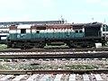 ET WDM2 ^16775 - Flickr - Dr. Santulan Mahanta.jpg