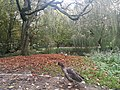 Eimsbütteler Park, Hamburg (40288645542).jpg