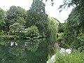Eimsbütteler Park Am Weiher Bäume (1).jpg